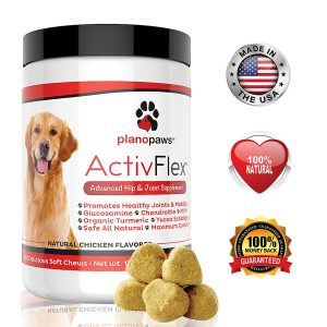 natural dog supplement