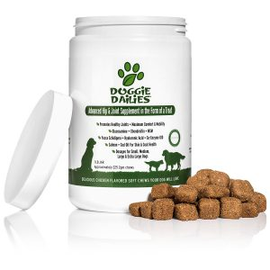 best dog vitamins