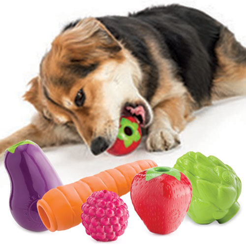 The importance of dog toys